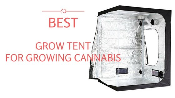 Best Grow Tent for Growing Cannabis – 2018 Reviews & Guide