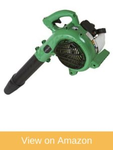 Hitachi RB24EAP Handheld Leaf Blower (CARB Compliant)