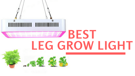 Best Led Grow Lights 2020