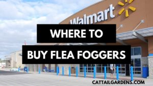 where to buy flea foggers