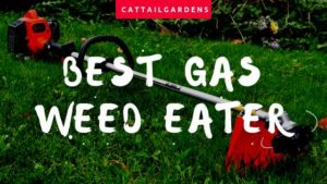 best gas weed eater