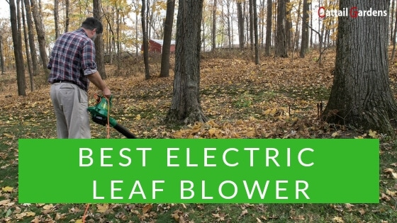 What is the best electric leaf blower for the money