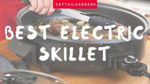 Best Kitchen Skillet