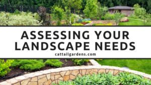 Assessing your landscape needs