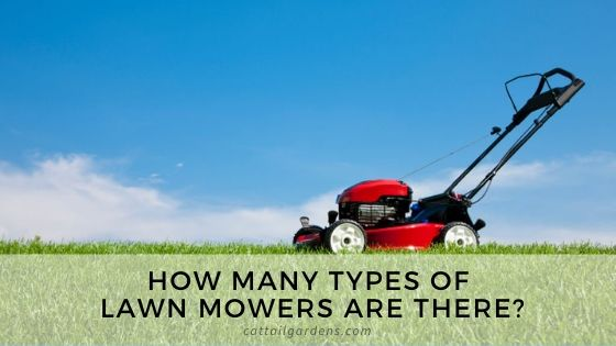How many types of lawn mowers are there