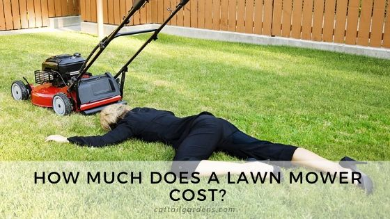 How much does a lawn mower cost