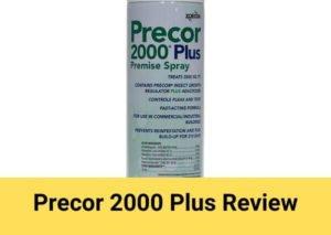 Precor 2000 Plus Review