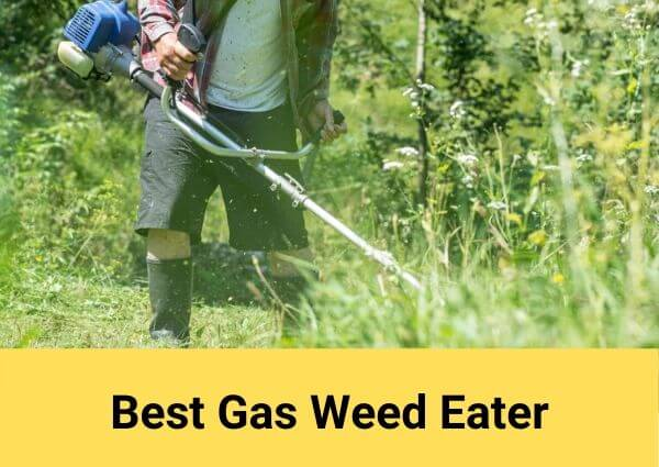 Best Gas Weed Eater 2020