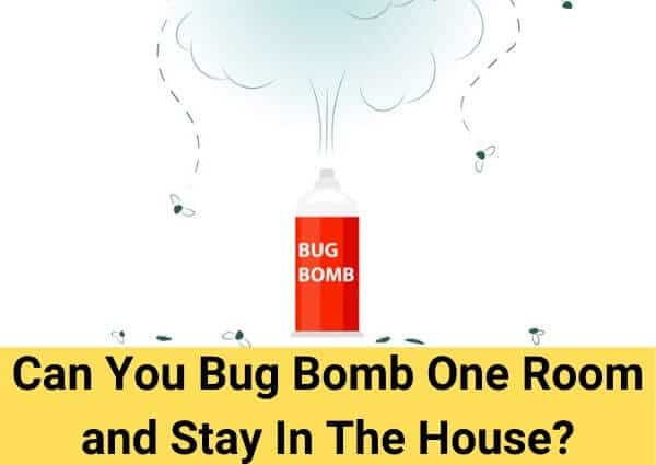 Can You Bug Bomb One Room and Stay In The House?