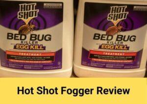 hot shot fogger review